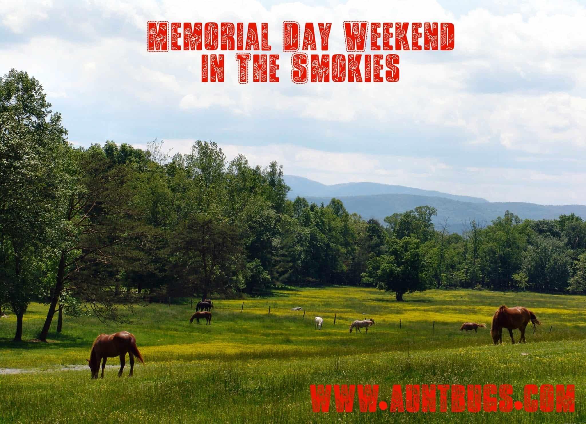 Memorial Day Weekend in The Smokies