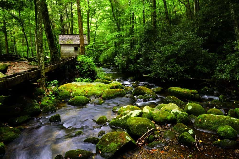 4 unexpected bonuses of staying at a secluded smoky for Rent cabin smoky mountains