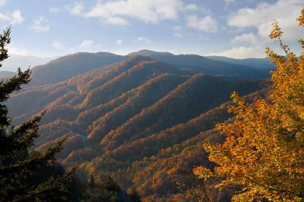 Stunning Gatlinburg TN fall colors in the mountains.