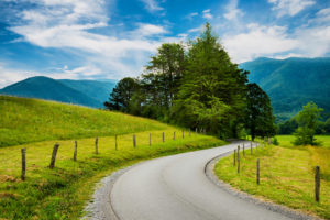 The winding road in Cades Cove.